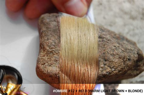 Complete Hair Extensions & Dyeing Color Chart (color