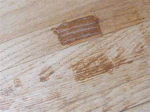 Do pets ruin your hardwood floors mn pets and wood floors for Cat urine on hardwood floors