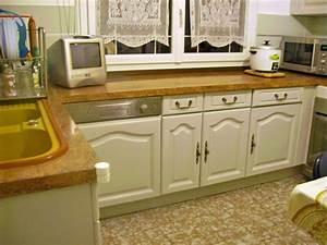 conseils pour repeindre cuisine en chene cuisine With comment peindre des meubles de cuisine