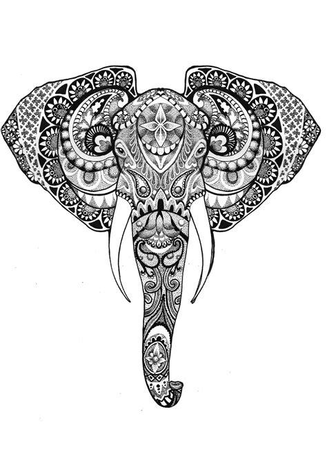 elefante imprime dessin tete elephant tatouage