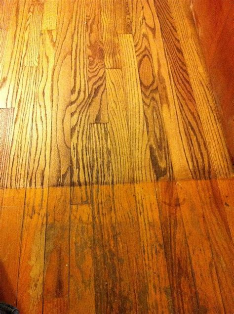 sandless floor refinishing products a