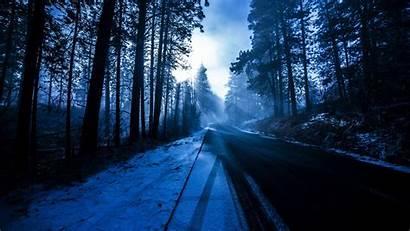 Winter Forest 4k Wallpapers Road Desktop Phone