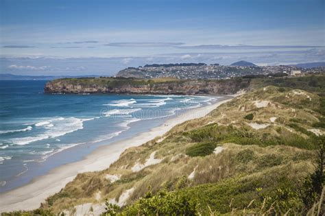 Coast Otago New Zealand Stock Image Hill