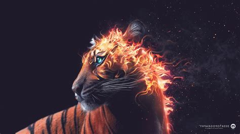 desktopography fire artwork animals digital art tiger