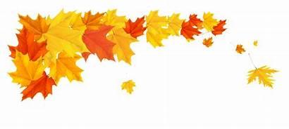 Leaves Clipart Fall Line Maple Break Leafs