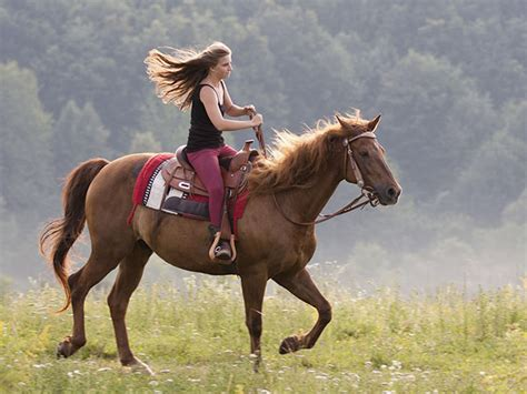 horse stubborn cbn harness topics riding woman spirit devotion related