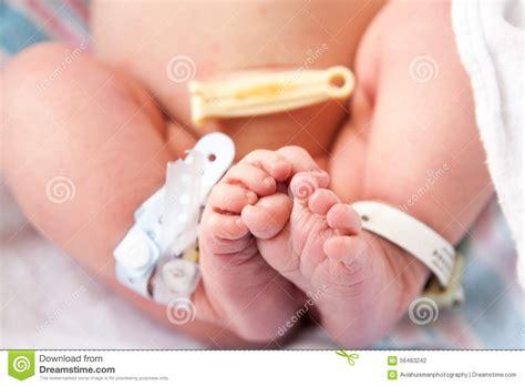 Newborn Baby Feet Stock Photo Image 56463242