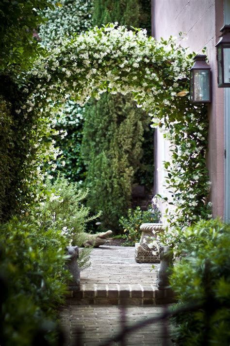 Garden Arbor Plants by 175 Best Arbor Designs And Ideas Images On