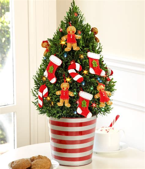 Decorate With Mini Christmas Trees  Learn How From The Pros