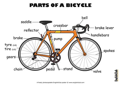 Bicycle Parts, The O
