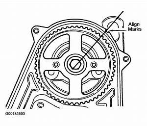 1984 Ford Escort Serpentine Belt Routing And Timing Belt
