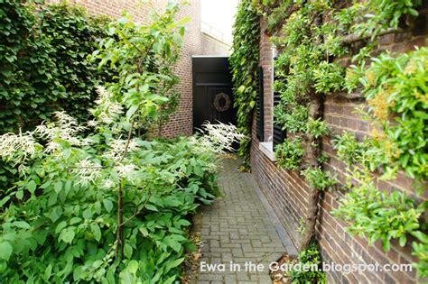 triyae landscaping a small shady backyard various