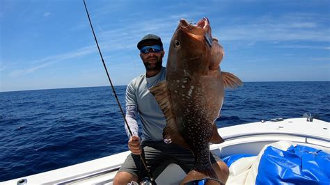 gulf grouper fishing luck bait pitch slow lures ton else techniques anyone past week comments having been