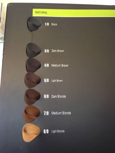 color book hair color chart synthetic hair color swatch book buy