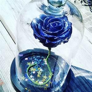 Rose Eternelle Sous Cloche : cloche rose stabilis e ternelle ~ Farleysfitness.com Idées de Décoration