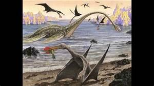 Ornithocheirus VS Quetzalcoatlus - YouTube  Quetzalcoatlus