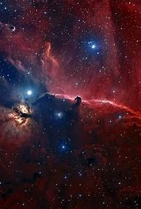 The Horsehead Nebula in Orion | Flickr - Photo Sharing!