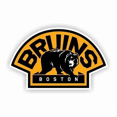 Bruins Boston Vinyl Vector Logos Decal Sticker