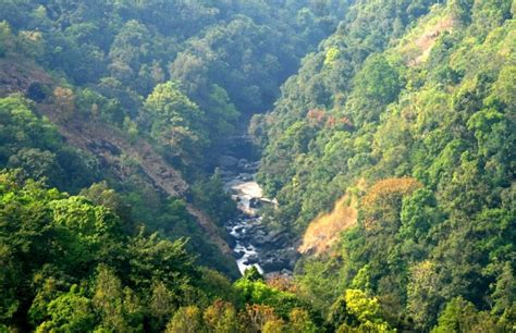 silent valley national park best tourist places in the world