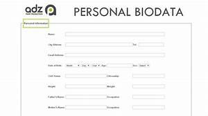 portfolio With create biodata online