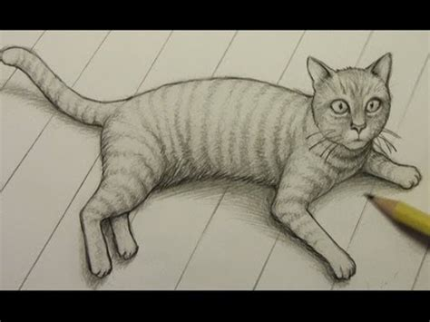 draw  cat youtube
