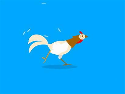 Gifs Animated Chicken Funniest Week Li Cartoon