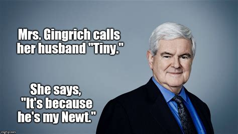 Newt Gingrich Meme - this one may take a minute imgflip