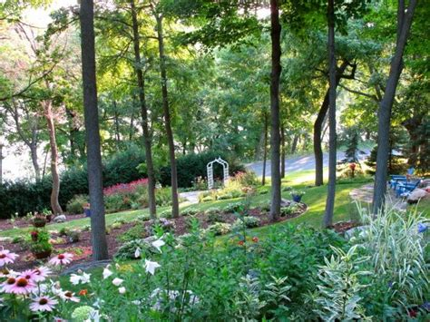 1000 images about woodland garden ideas on