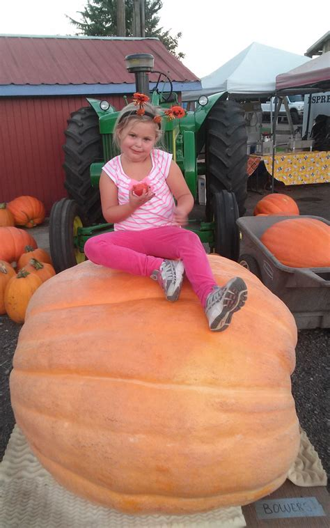 Poured Epoxy Flooring Springfield Mo by 13 Vancouver Washington Pumpkin Patch Maple