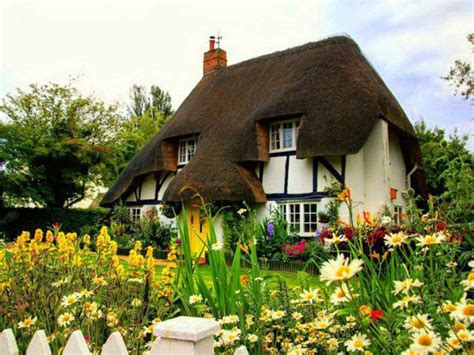 Nice Thatch Roof Pics