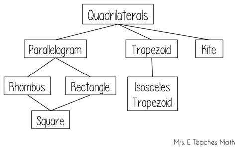 teach  quadrilateral family tree   teaches