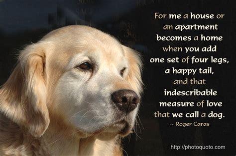 happy animal quotes quotesgram
