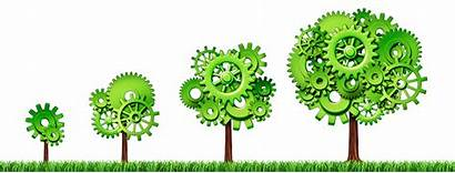 Growth Approach Grow Growing Tree Economy Business