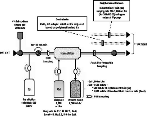 crrt dialysis circuit  regional citrate