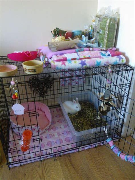 hutch accessories large indoor rabbit hutch diy rabbit cage ideas