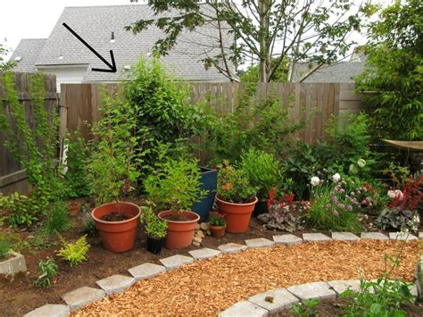 Image Of Landscaping For Beginners Ideas Easy Design
