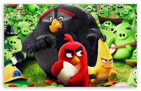 Animated Bird Wallpaper - angry birds wallpaper hd impremedia net