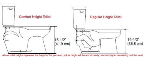 bidetking choosing the right toilet and bidet