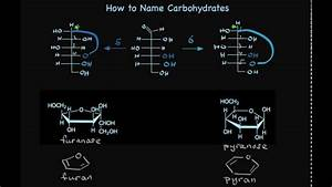How To Name Carbohydrates  Sugars