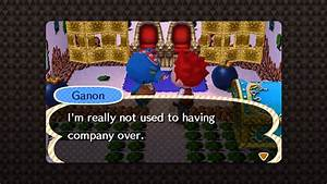 Animal Crossing New Leaf Wolf Link And Ganon Amiibo