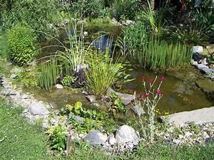 Teich Und Garten : gartenteich wiktionary ~ Frokenaadalensverden.com Haus und Dekorationen