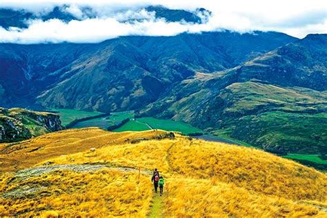 New Zealand Hiking Tours