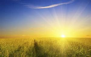 Truly the sunlight is sweet! - Quantum Leap Wellness