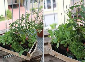 bienenweide fur den balkon With französischer balkon mit bienenfreundliche pflanzen für balkon und garten