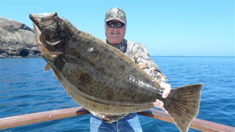 channel islands sportfishing central coast