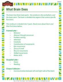 5th Grade Science Worksheets Brain