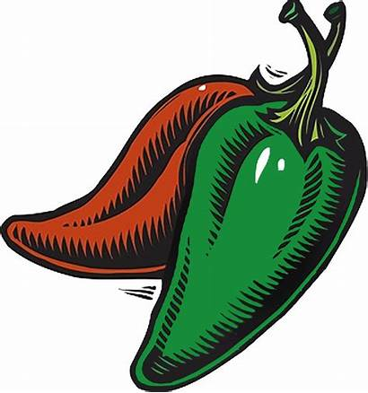 Jalapeno Clipart Chilli Peppers Drawing Background Chili
