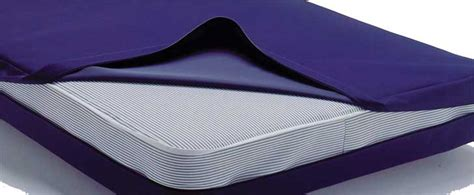 mattress protectors  dust mites  bed bugs