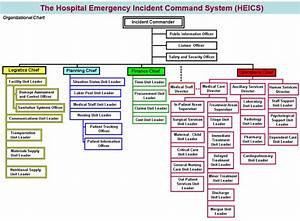 Developing A Hospital Emergency Incident Command System