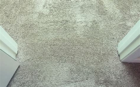 Carpet Repair In Mississauga, Waves, Ripples, Burns, Stains, Spills, Pulled Face Yarns, Cuts Red Carpet Meaning In Tamil First Choice Carpets And Beds Wood Green Mohawk Leaf Pattern Weaving Urdu What Pad Is Best For Soundproofing Waterproof Outdoor Decks Taylor One Palm Beach Blvd Steam Pro Cleaning Denver